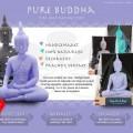 purebuddha